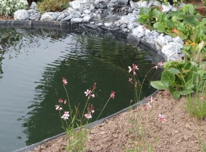 Ecolat Pond_Edging_3