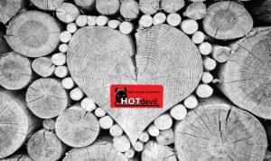 Welke soorten hout zijn geschikt voor brandhout? WOODcom